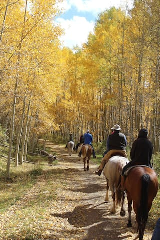 The Ultimate Guest Ranch Experience