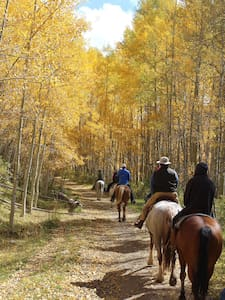 The Ultimate Guest Ranch Experience - Mancos