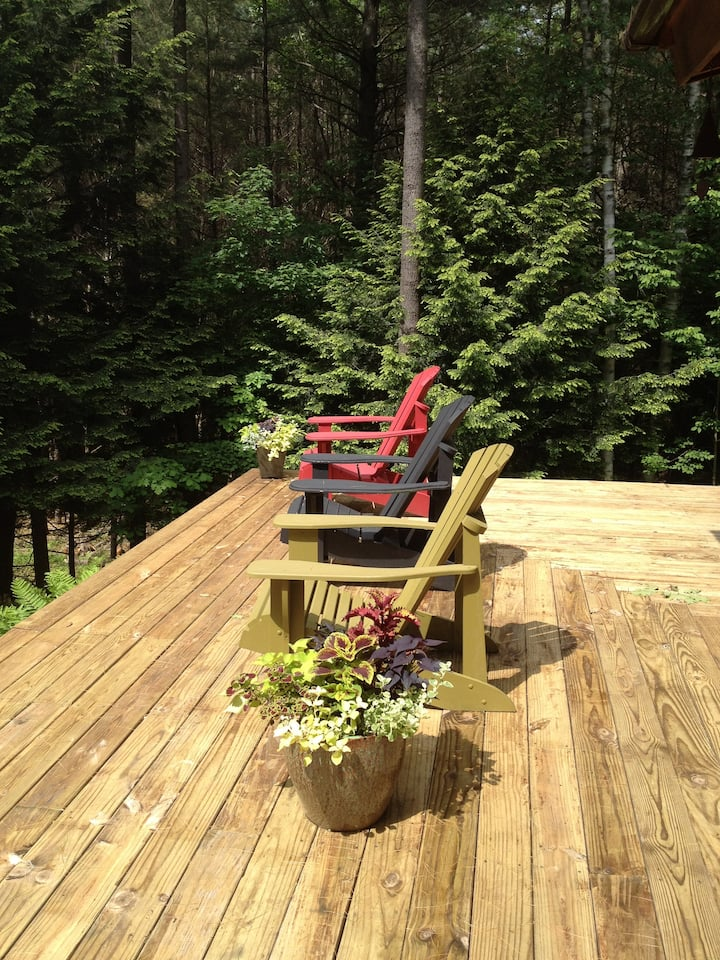LT Rental High Peaks: Classy Rustic Retreat