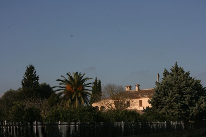 FINCA SON GALIANA ( con licencia )