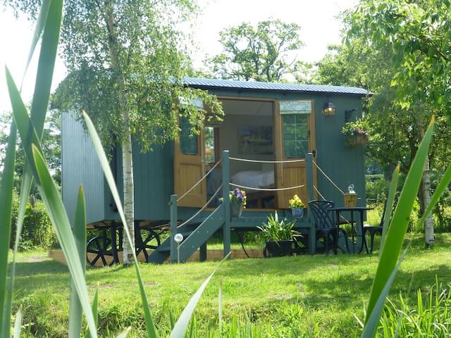 Lake Farm Shepherds Hut - Welshpool - Stråhytte