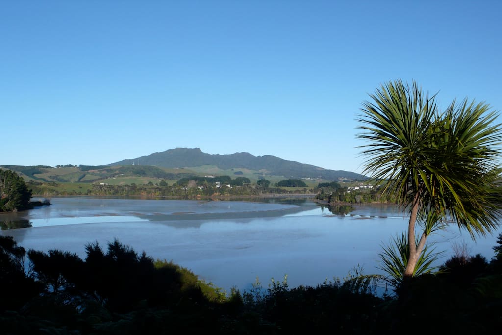 Inner harbour and Mt Karioi from deck