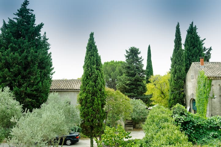 New charming B&B in Camargue - Gallargues-le-Montueux - Bed & Breakfast