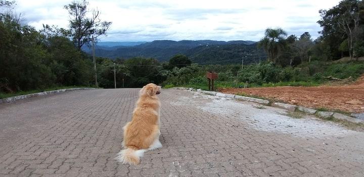 Vila Germânia Nova Petrópolis