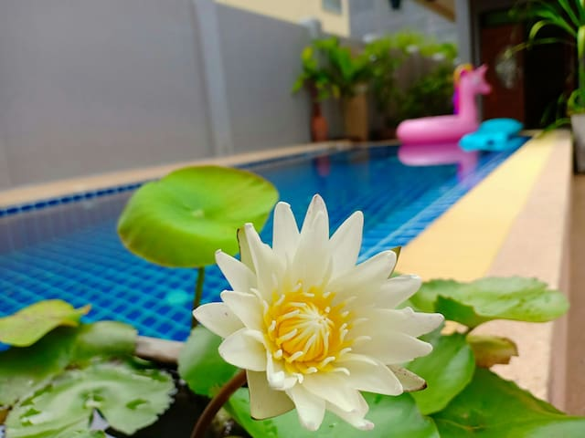 Villa 4 BDR with Swimming Pool in Center Pattaya