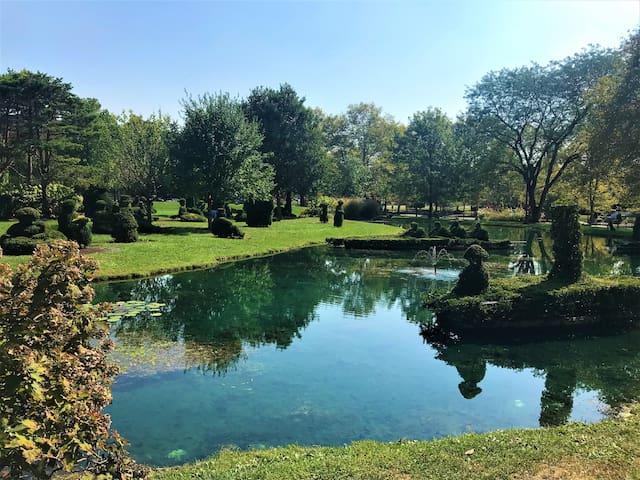 Zoe's topiary garden