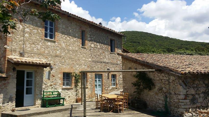 Tipico casale in pietra con uliveto - Guardea - Vila