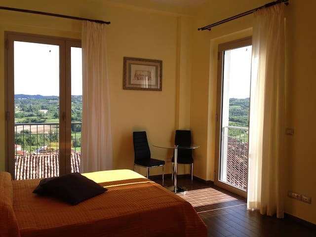 Sunflowers fields in Monferrato - Gabiano - Apartment