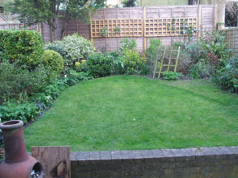 Our small back garden in early Spring.