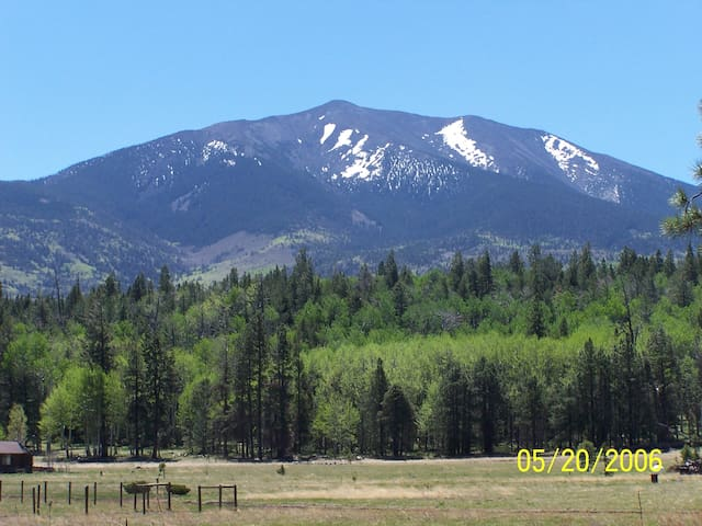 Majestic view of the San Francisco Peaks from the deck.