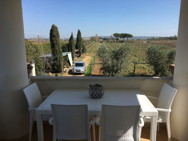 Julia Suite at Etruscaia vineyard - Tarquinia - Apartment