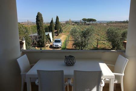 Julia Suite at Etruscaia vineyard - Tarquinia - Huoneisto