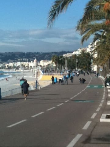 Flat in Nice,the  french riviera - Nice - Apartment