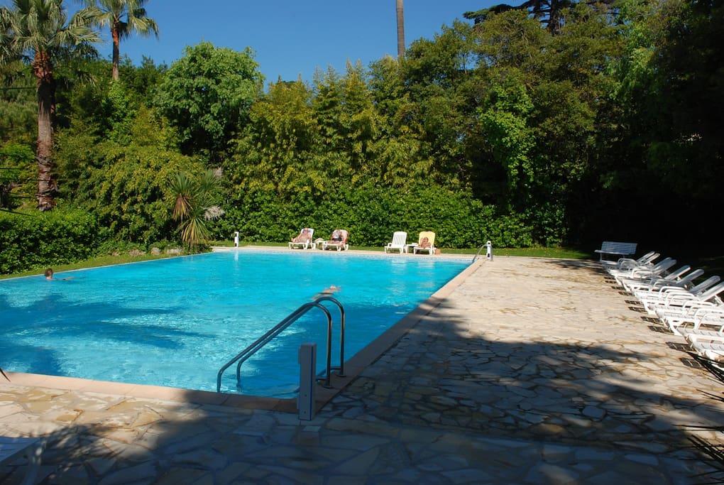 Studio avec terrasse parking s curis et piscine - Location cote d azur avec piscine ...