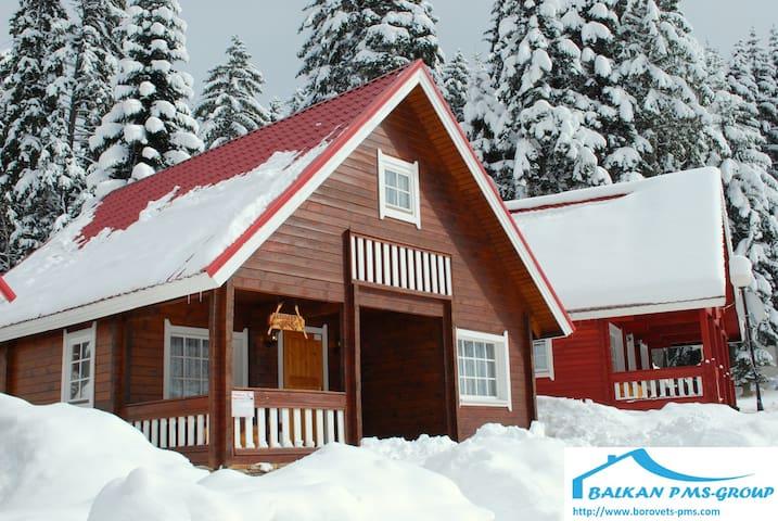 Alpine Chalet Tomba - Borovets - Huis