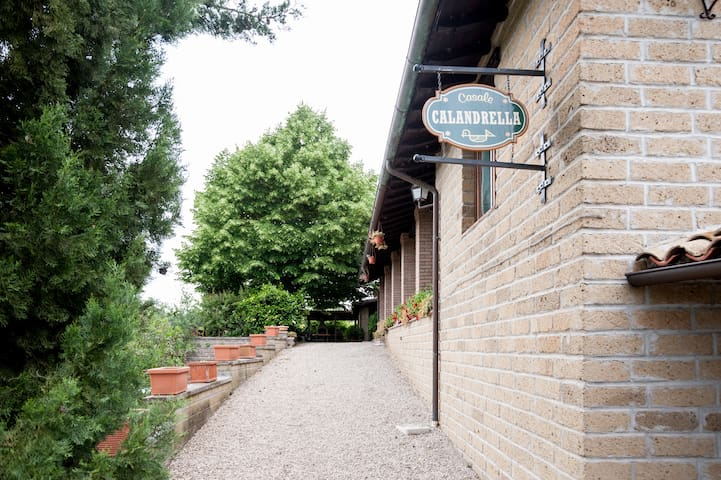 Suite near Orvieto and Bagnoregio - Province of Viterbo - Villa