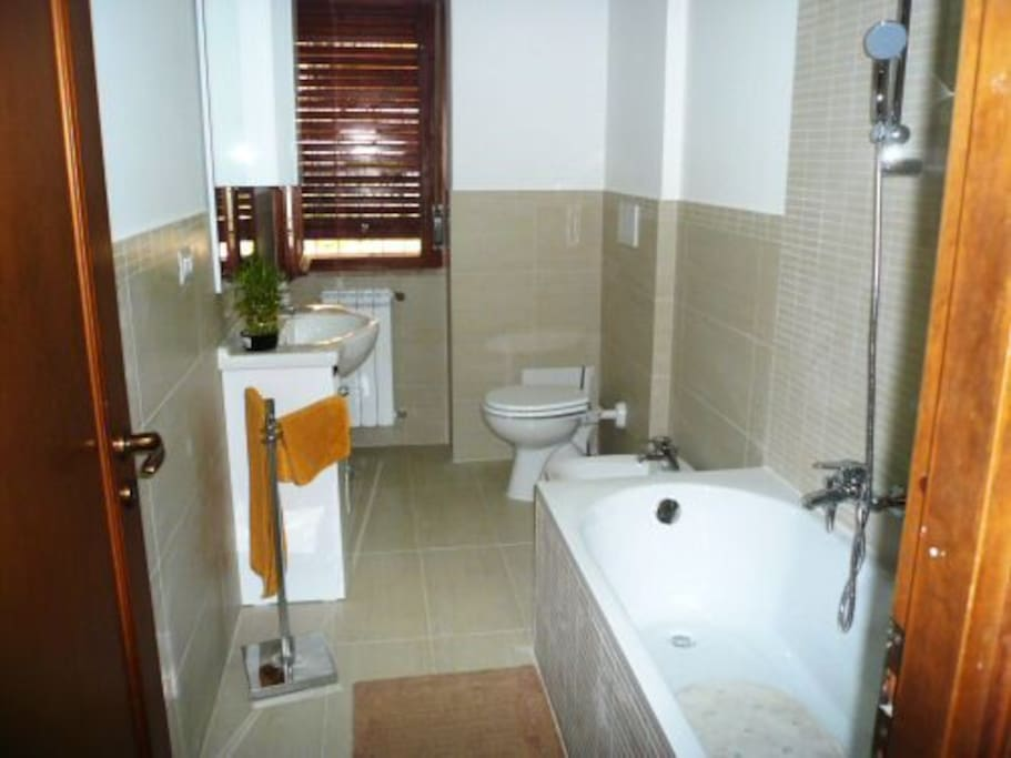 Full modern bathroom with tub, shower, bidet,WC, and washbasin