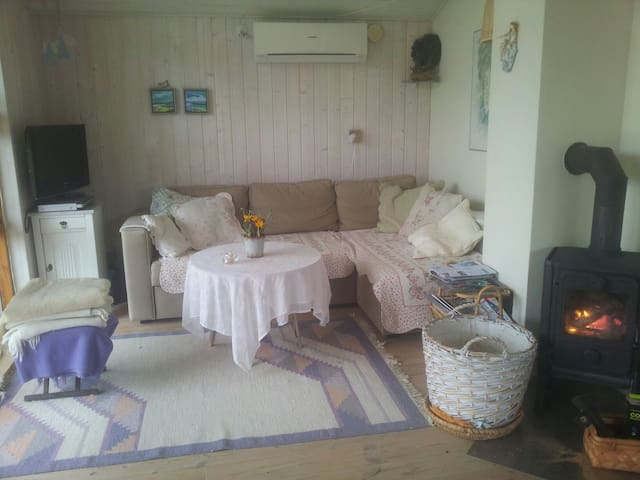 hyggeligt, velholdt helårssommerhus - Tranekær