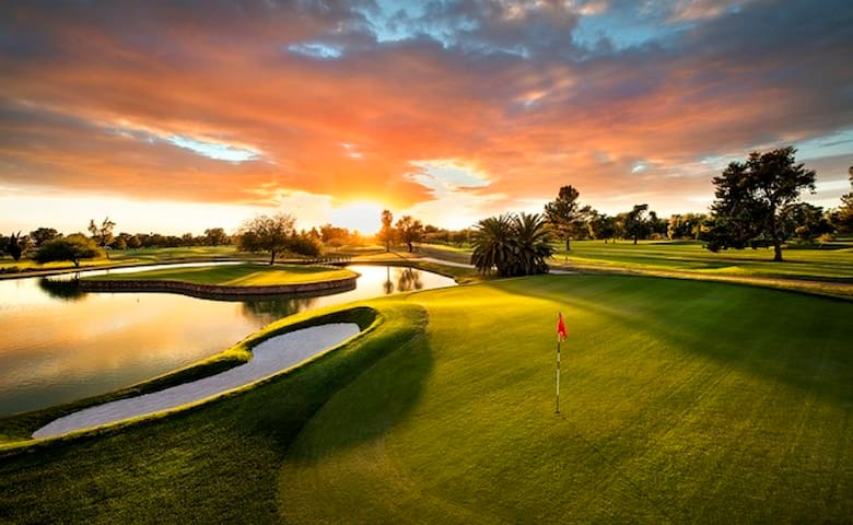 ⛳NEW LISTING-Daily Dose Of Iron@Golfer's Paradise⛳