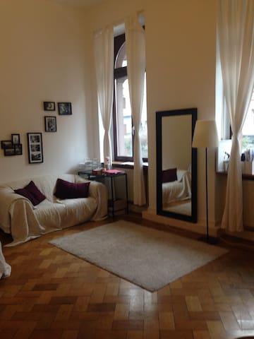 Zentrale gemütliche Altbau-Wohnung - Mainz - Apartemen