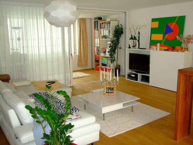 CENTRAL MODERN SILENT APARTMENT - Lucerne - Apartment