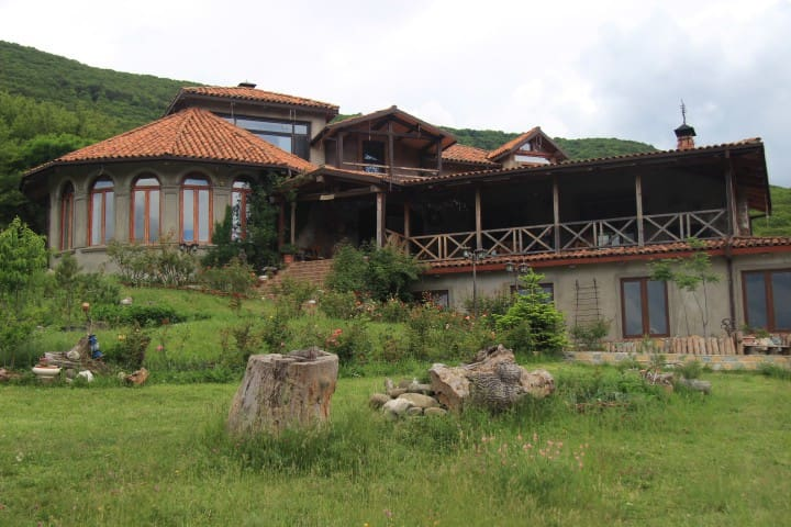 NATURE LOVERS DREAM VIP VILLA !  - Tbilisi - Huvila