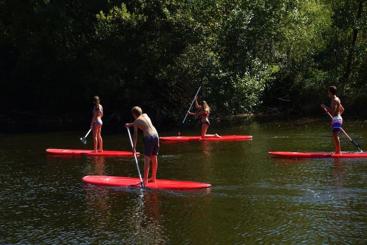Paddle sur la Loire ( Bas en Basset) à environ 25 min du meublé