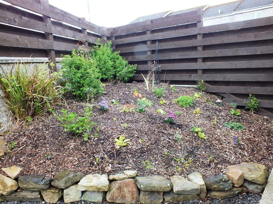 Fenced back garden