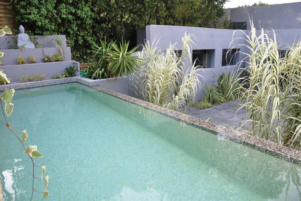 Terrasse et salon de jardin - Piscine