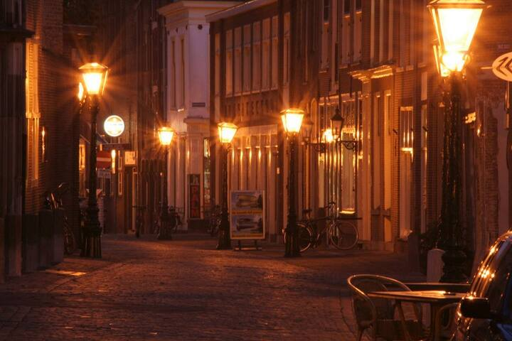 In the historic city of Leiden