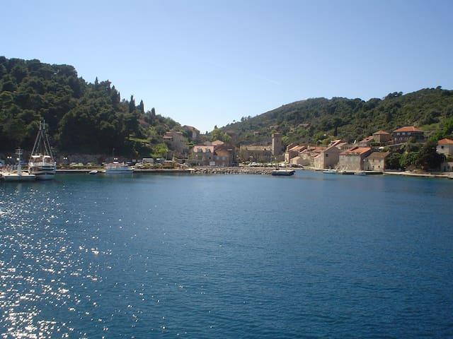 Lovely triple room on Šipan island! - Dubrovnik - Casa