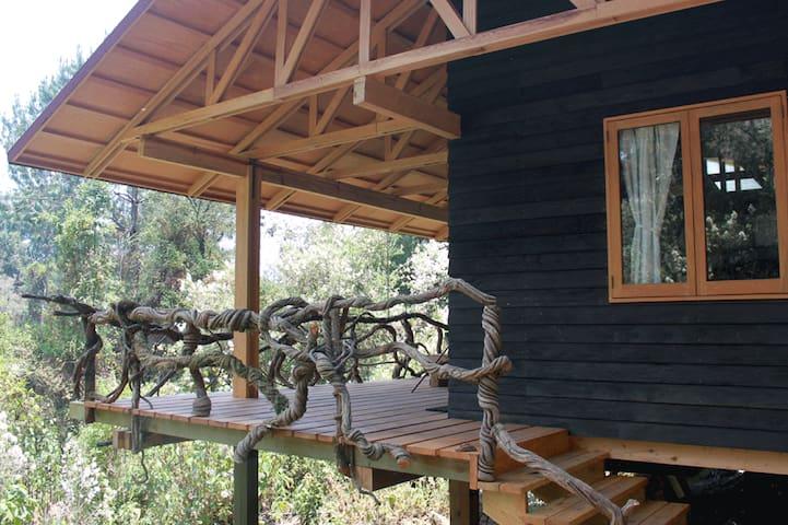 Cabañas ecológicas en medio del bosque