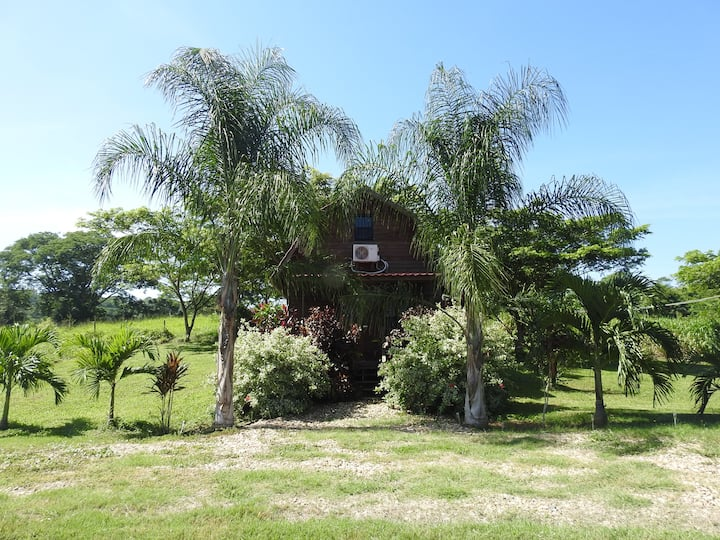 Pilgrim's Paradise Cabin 2