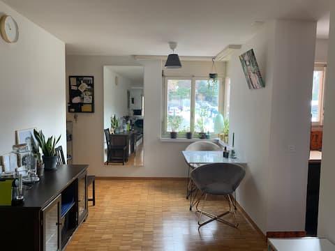 Entire apartment(close to Zürisee, Bellevue, etc.)