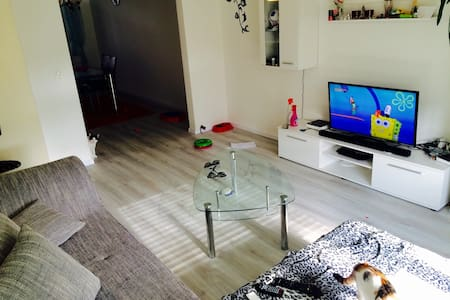 30mins to your next destination - Olten - Apartament