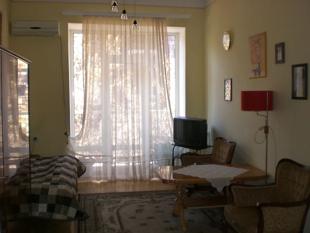 Second Room in Apt Heart of Yerevan - Yerevan - Appartement