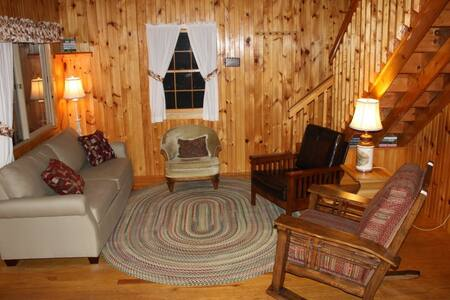 Family-Friendly Updated Cottage  - Cabane