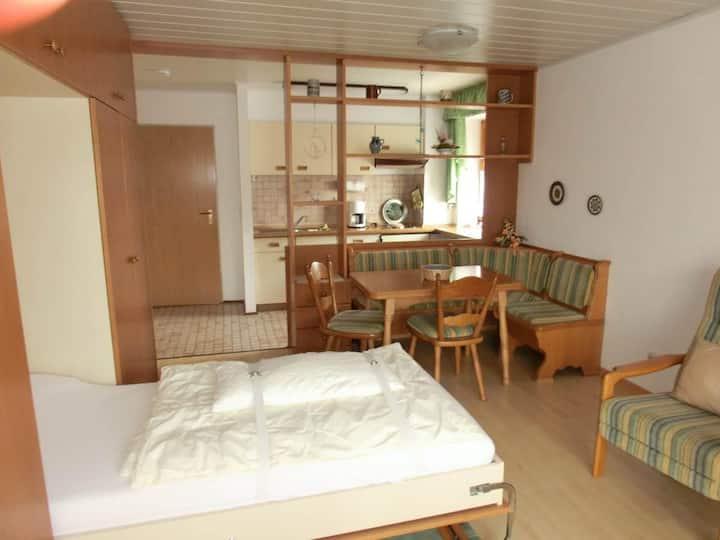 Appartementhaus Margarita (Bad Füssing), Einzimmer-Appartement (35 qm) mit überdachtem Südbalkon