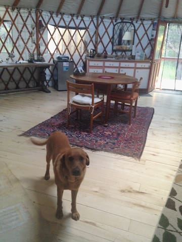 This is the dinner table in the center of the yurt.