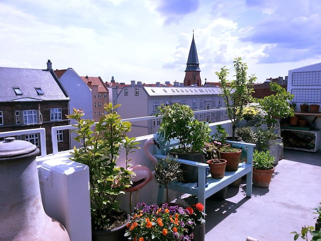 Cosy penthouse with large terrace