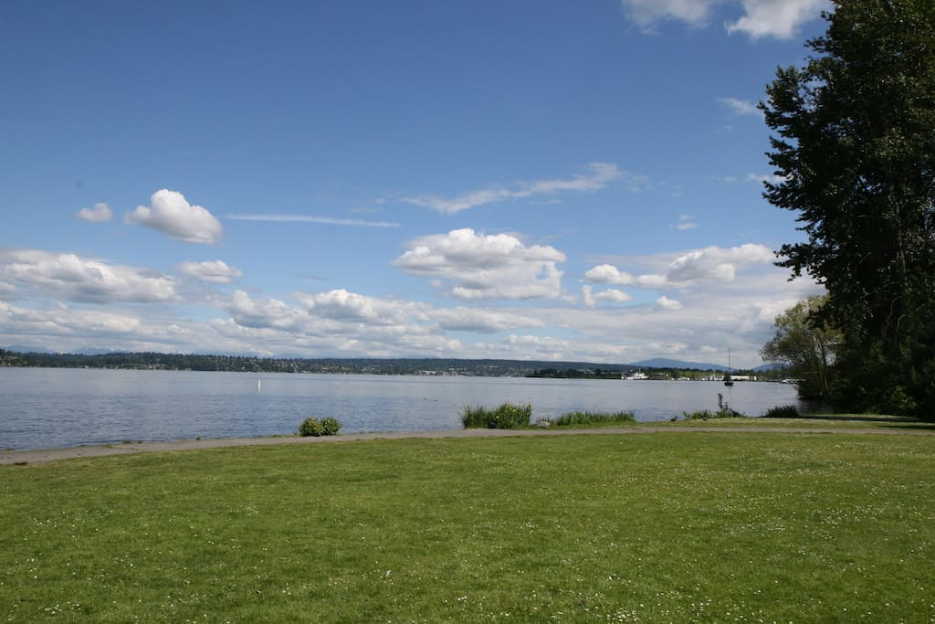 A view of Lake Washington from the park across the street.