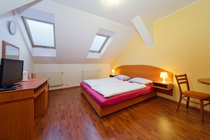 Studio in centre of Prague (b & b ) - Praga - Bed & Breakfast