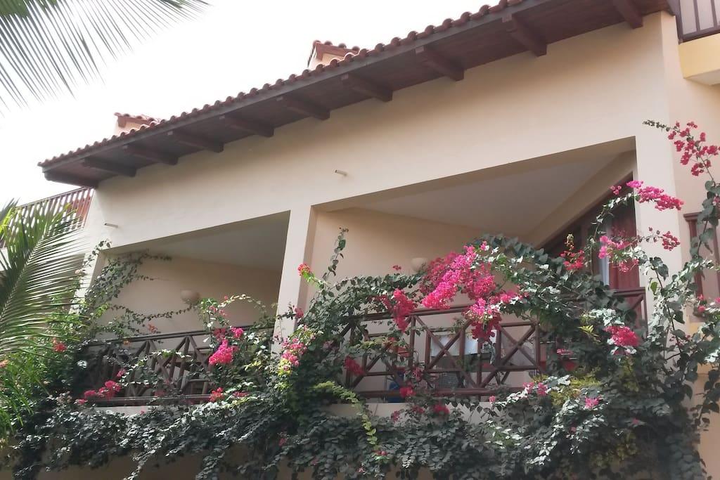 Your balcony overlooking tropical flowers