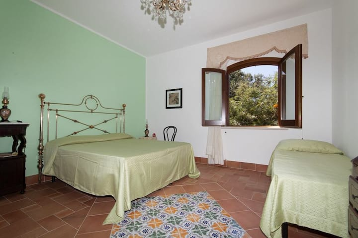 B&B BAGLIO BUCCELLATO IN SCOPELLO