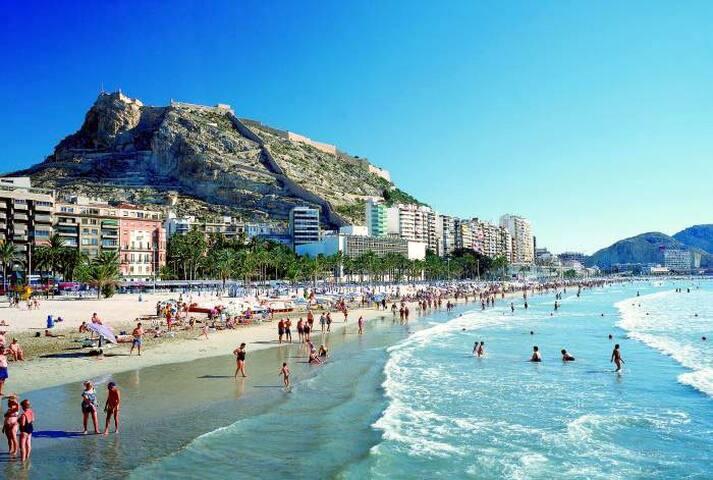 Miete Wohnung im sonnigen Alicante  - Alacant - Pis