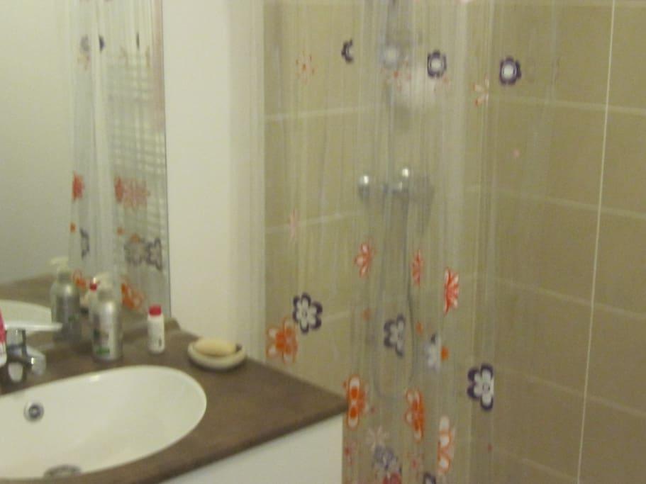 Belle chambre chez l 39 habitant aix apartments for rent in - Chambre chez l habitant aix en provence ...