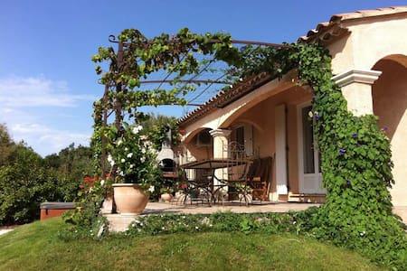 Villa and Jacuzzi (Pont du Gard) - Pouzilhac