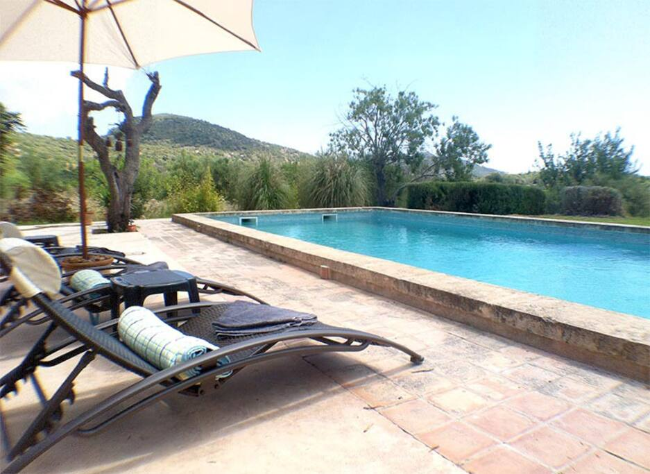 Sunbeds overlooking the pool
