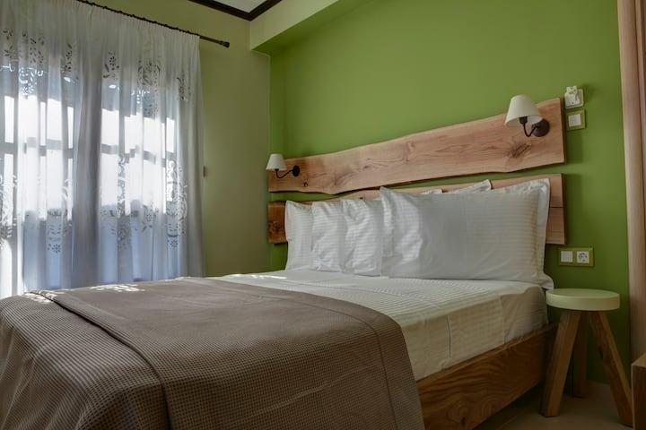Elaion Terra Boutique Guesthouse (Elaiodora Room)