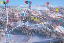 Pistes de ski à 1/2h de voiture
